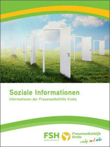 Soziale Information